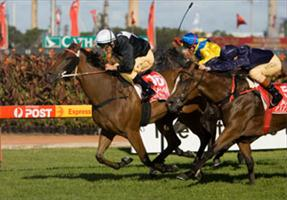 Forensics wins our second Golden Slipper