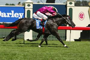 Lonhro wins to the roar of the crowd in a memorable  Australian Cup