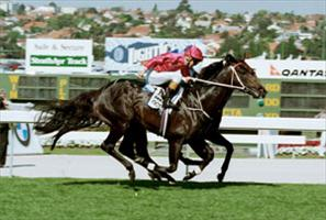 Octagonal  triumphs as a 3 year old in the race that makes legends – Cox Plate