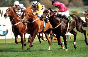 Octagonal wins 'the greatest' Derby