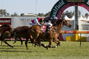 Railings wins our first Caulfield Cup