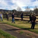 Hawkes Racing clients looking @VineryStud stallion Pluck