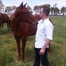 Curtis Gavin inspecting his new yearling at Makybe Stud ....... Strategic x In The Club colt