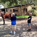 John with Bob and Wendy LaPointe looking at yearlings at Muskoka Farm