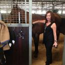 Louise Orielly @ the Rosehill stables with her Northern Meteor Filly... Mary's Dawn