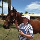Mossman x Informant colt at Magic Millions
