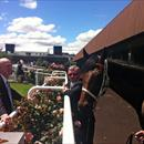 Phil Duggan with John and Niwot after his dominating win at Flemington