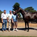 Rob Mitchell, Wayne Forrest and John with their new horse... Melbourne Premier Sale Lot 238 Al Maher x Aspire Coly