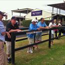 Sydney Easter Yearling Sales 2012