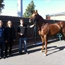 The boys with Luck San at Flemington
