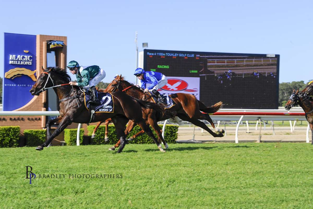 EXCEEDANCE - WYONG - 16/05/2019